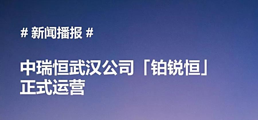 中瑞恒武汉公司「铂锐恒」正式运营